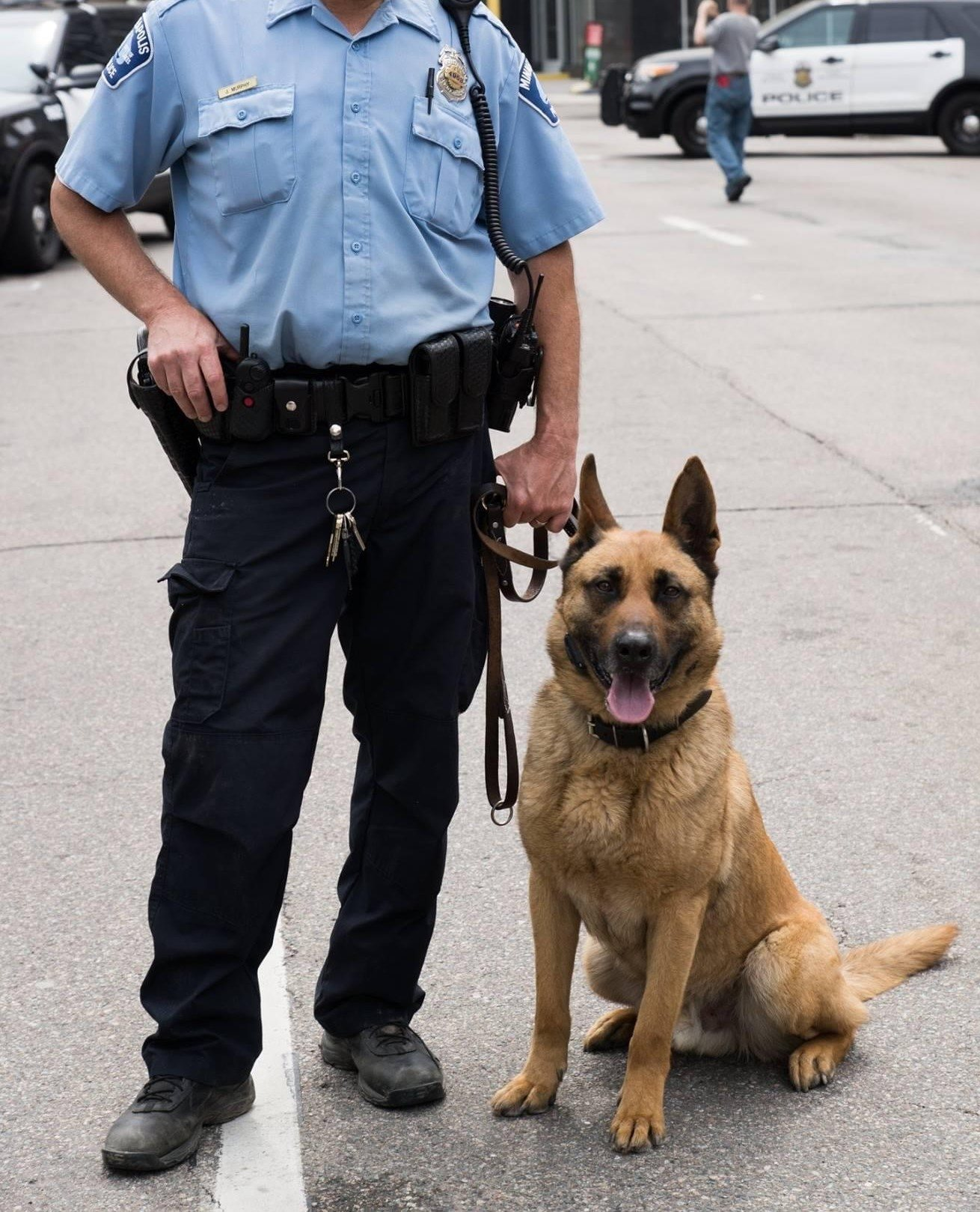 Canine and officer.