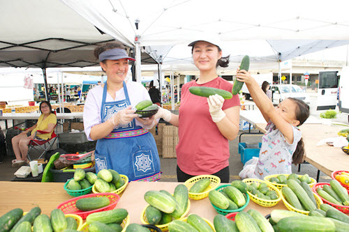 Farmers market vendors with cucumbers